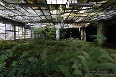 Silent running (Pigeoneyes.com) Tags: fabbrica factory abandoned abbandono abbandonata pigeoneyes lostitaly edificiabbandonati industrial industria industry