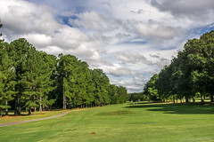 Perspective (agasfer) Tags: 2018 southcarolina greenville golf course sony a6000 7artisans 7artisans11825mm