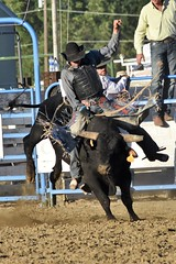 "Baker County Tourism – basecampbaker.com 47225 (Base Camp Baker) Tags: oregon ""easternoregon"" ""bakercountytourism"" basecampbaker ""basecampbaker"" ""bakercounty"" rodeo cowboys ""bakercitybroncandbullriding"" ""bakercity"" ""oregonrodeo"" ""minersjubilee"" oregonrodeo ramrodeo traveloregon travel tourism roughstock rodeolife bulls bullriding"