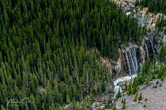 Forest & a Waterfall (Varinder Gill) Tags: sunwapta waterfall forest valley trees nature height travel nationalpark jasper photography photographer rockies rockymountain