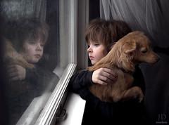 Longing ({jessica drossin}) Tags: jessicadrossin child window wwwjessicadrossincom dog puppy reflection love sad boy