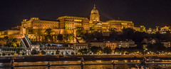 2018 - Hungary - Budapest - Buda Castle (Ted's photos - For Me & You) Tags: 2018 budapest cropped hungary nikon nikond750 nikonfx tedmcgrath tedsphotos vignetting budacastle budapesthungary castle danuberiver danube wideangle widescreen unesco unescoworldheritagesite