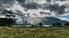 Light show (Migge88) Tags: irland ulaub see lake regen sonne rain light sun clouds wolken blau blue himmel sky bäume trees gras grün green wasser water alpha 6500 sony wiese weide
