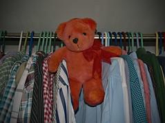 Teddy Bear Helper (BKHagar *Kim*) Tags: bkhagar teddy bear teddybear gloria orange ribbon closet helper organizing organizer htbt