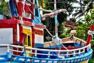 Color Boat