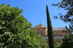 Mezquita (nic0v0dka) Tags: espagne andalousie cordoue córdoba