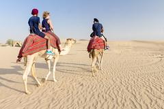 Camel Ride, Desert / UAE (Piotr Kowalski) Tags: dubai uae unitedarabemirates emirates dunes sand piasek pustynia dubaj emiraty wakacje summer activity caravan camel