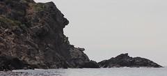 Costa brava coastline creus cape (patrick555666751 THANKS FOR 5 000 000 VIEWS) Tags: costa brava coastline creus cape costabravacoastlinecreuscape cote tree arbre arboles pierre piedra stone roque roc rock roche europe europa spain espagne espana catalonia cataluna catalogne catalunya pays catalan paisos catalans mediterranee mediterraneo mediterannean cap patrick55566675