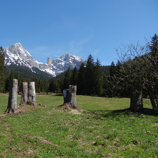 Regreso a los Alpes - Return to the Alps