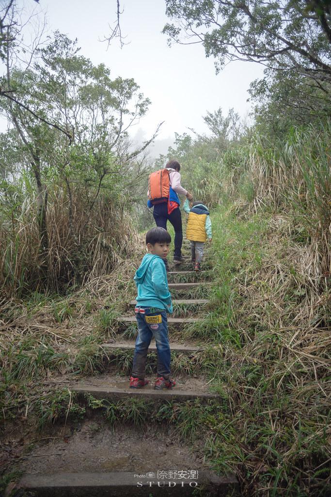 太平山翠峰湖環山步道 |走在泥濘的道路上,只為途中美景 | 宜蘭大同鄉60
