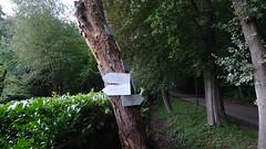Klompenpad: Aderwinkelpad (Cor D.) Tags: aderwinkelpad klompenpad utrecht nederland netherlands driebergenrijsenburg klompenpadennl langbroekerwetering werkhoven aderwinkel broekbergen dennenburg