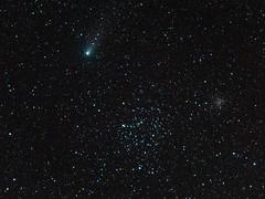 Comet 21P/Giacobini–Zinner and Messier 35 (astronut2007) Tags: comet comet21pgiacobini–zinner m35 ngc2158 elgin moray scotland 15september2018 messier35 astrometrydotnet:id=nova2806628 astrometrydotnet:status=solved