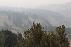 The smoke was really bad to the west (rozoneill) Tags: lassen volcanic national park peak hiking california volcano