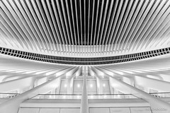 World Trade Center Oculus (CCYMINUM) Tags: newyorkcity wtc architecture balance bilateralsymmetry blackandwhite building contemporaryart ethereal fineart freedom geometry hub image interior lines lowermanhattan manhattan monochrome oculus oneworldtradecenter path peaceful photo photography print quiet railsystem serenity shoppingmall staion subway symmetrical symmetry transportation urban