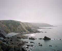 Sharpnose Point #6 (@davidflem) Tags: morwenstow cornwall mamiya7 65mm kodak portra400 120film 6x7 mediumformat filmphotography istillshootfilm