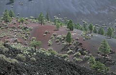 Sunset Crater Volcano (Ron Wolf) Tags: cenozoic earthscience geology geomorphology holocene nationalpark quaternary sunsetcrater sunsetcratervolcanonationalmonument cindercone crater eruption landscape nature volcanic volcanism volcano arizona