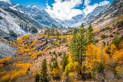 Lundy Canyon Winter Waterfalls High Sierras Autumn Snow Aspens Leaves Clouds Fine Art Landscape Photography: Sony A7RII Eastern Sierras Nature: McGucken California Fall Foliage Autumn Colors Scenic Vista View! Carl Zeiss Sony T* FE 16-35mm f/4 ZA OSS! (45SURF Hero's Odyssey Mythology Landscapes & Godde) Tags: lundy canyon waterfalls high sierras autumn aspens leaves clouds fine art landscape photography sony a7rii eastern nature elliot mcgucken california fall foliage colors scenic vista view carl zeiss t fe 1635mm f4 za oss red orange yellow