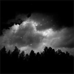 By Reflection (Olli Kekäläinen) Tags: work5012 nikon d800 photoshop ok6 square ollik 2018 20180829 bw reclection dark blackandwhite kuopio joutenjärvi suomi finland joutenlampi pool