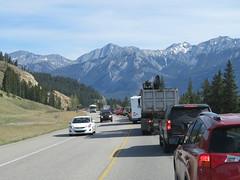 Brief delay due to construction just north of Jasper, Alberta on Hwy 16 (jimbob_malone) Tags: 2018 highway16 alberta