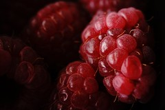 Enjoy! (juliaturnau) Tags: favouritefood fresh closeup fruit delicious macrophotography framboise lampone raspberry