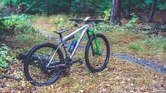 Cube AMS Heide (Michael_Topp) Tags: fahrrad mountainbike dresden cube sony nex
