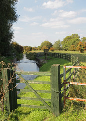 East Cambridshire (Adam Swaine) Tags: river rivers riverbank canon cambs counties countryside county ukcounties waterside waterways walks england english englishlandscapes eastanglia summer britain british rural woodengate beautiful eastcambs