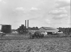 North Isis Sugar Mill (Queensland State Archives) Tags: qsa queenslandstatearchives northisissugarmill northisis sugar sugarmill sugarcane