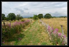 ST-Chely-d'Aubrac (jeanjacques.salaun) Tags: aveyron randonnée sentier nature