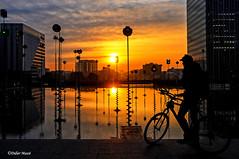 Le cycliste au lever du soleil (didier95) Tags: cycliste paris ladefense leverdesoleil scenedevie architecture ville reflet bassintakis jaune vélo