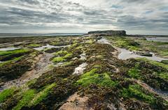 Middle Eye (Rob Pitt) Tags: middle eye hilbre island west kirby sony a7rii canon 1740 f4 l seaweed slippy rocks