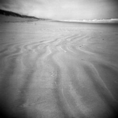 Ocean Desert #9 (LowerDarnley) Tags: holga oregon oregoncoast florence oregondunes dunes beach sand pacificocean northwest
