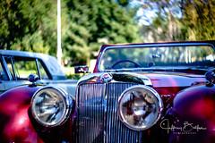 1949 Triumph TR2000 (Jeffrey Balfus (thx for 3 Million views)) Tags: 1949 carguys tr2000 triumph cars saratoga california unitedstates us sonya9mirrorless sonyalpha sonyilce9 fullframe meyeroptik gorlitz 58mm f19 primoplan