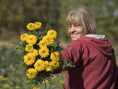 Le bouquet ! * (Titole) Tags: smile rosedinde yellow shallowdof titole nicolefaton bouquet worker field