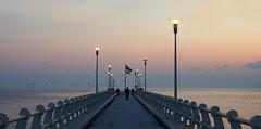 After the sunset in Versilia (Darea62) Tags: sunset seascape skyscape bridge streetlights fortedeimarmi versilia pier jetty birds