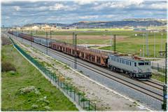 Vacío de coches en Valladolid (440_502) Tags: 269 6900 renfe amf rosco comsa rail transport pecovasa ma7 alquiler japonesa japo muriedas valladolid universidad campo grande 029 6929