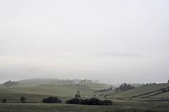 . foggy morning (fernotte) Tags: fog fields nature weather morning poland landscape mist grass sky