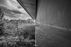 Föderlach Bridge (em-si) Tags: wernberg kärnten carinthia austria österreich blackandwhite bw schwarzweis brücke bridge schilf reed fluss river drau nikond800 irix15mm24 perspective perspektive