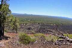 Trail of the Molten Land overview (daveynin) Tags: volcanic trail newberry oregon cinder cone cindercone