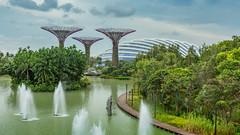 IMG_9173.jpg (Paul Gravestock) Tags: singapore sg