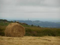 DSCN5628 (norwin_galdiar) Tags: bretagne brittany breizh finistere monts darrée nature landscape paysage