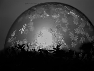 Frozen Bubble At Night
