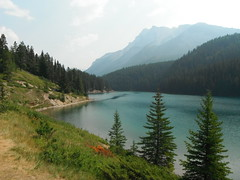 HTMT   Canada Parks (Mr. Happy Face - Peace :)) Tags: tree cans2s rockies canadaparks albertabound canada art2018 hiking daytrips yyc banff scenery landscape wilderness lover nature forest sky cloud lakes summer