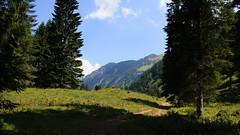 2018-07-25 Oberstdorf Einödsbach-89.jpg (marathon.michael) Tags: 2018 allgäu deutschland wandern landschaft orte wanderung jahreszeit bayern oberstdorf sommer alpen landscape zeit