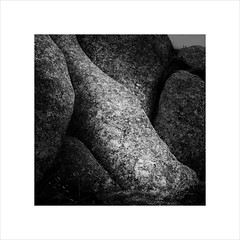 on the rocks (ekkiPics) Tags: brittany rocks bottle abstract seaside nature blackandwhite lowkey