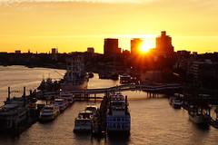 Sonnenuntergang auf der Elbphilharmonie (felix.schubbert) Tags: hamburg elbphilharmonie sonnenuntergang hafen hafencity sonyalpha6300 sel50f18 elbe