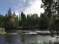 Ness Island #riverness #inverness #scotland #ecosse #wonderfulworld #highlands #river #nature (audreyplum) Tags: riverness inverness scotland ecosse wonderfulworld highlands river nature