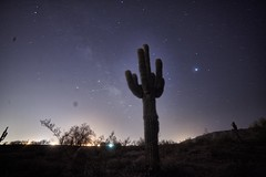 slight (AZ Bear Photography) Tags: milkyway stars cactus desert city lights plants landscape night sky