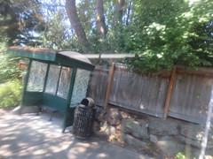 IMG_8322 (Andy E. Nystrom) Tags: bellevue washington wa bellevuewashington