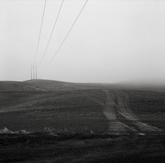 Eastern Washington (austin granger) Tags: washington palouse field wires poles winter fog topography land tracks evidence fallow farm square film gf670