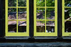 cabin reflections (jtr27) Tags: dscf1737xl jtr27 fuji fujifilm xt20 xtrans xf 1855mm f284 rlmois lm ois log cabin window reflection michigan hartwick pines state park lumbermans museum